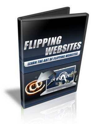 Product picture Flipping Websites + PLR